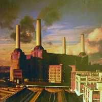 Pink Floyd - Animals, D (Or)