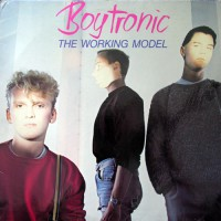 Boytronic - The Working Model, D