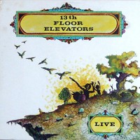 13th Floor Elevators - Live, US (Or)