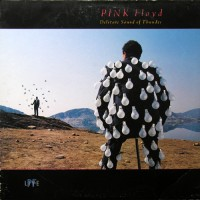 Pink Floyd - Delicate Sound Of Thunder, NL