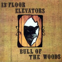 13th Floor Elevators - Bull Of The Woods, US (Or)