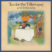 Cat Stevens - Tea For The Tillerman, D (Re)